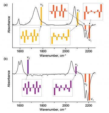 ARC case study: nanoring  assembly simulations.